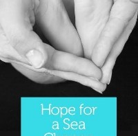 "ExMo Alum Elizabeth Aquino's New Book ""Hope for a Sea Change"""
