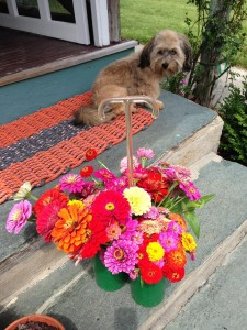 Her dog Oliver and flowers!